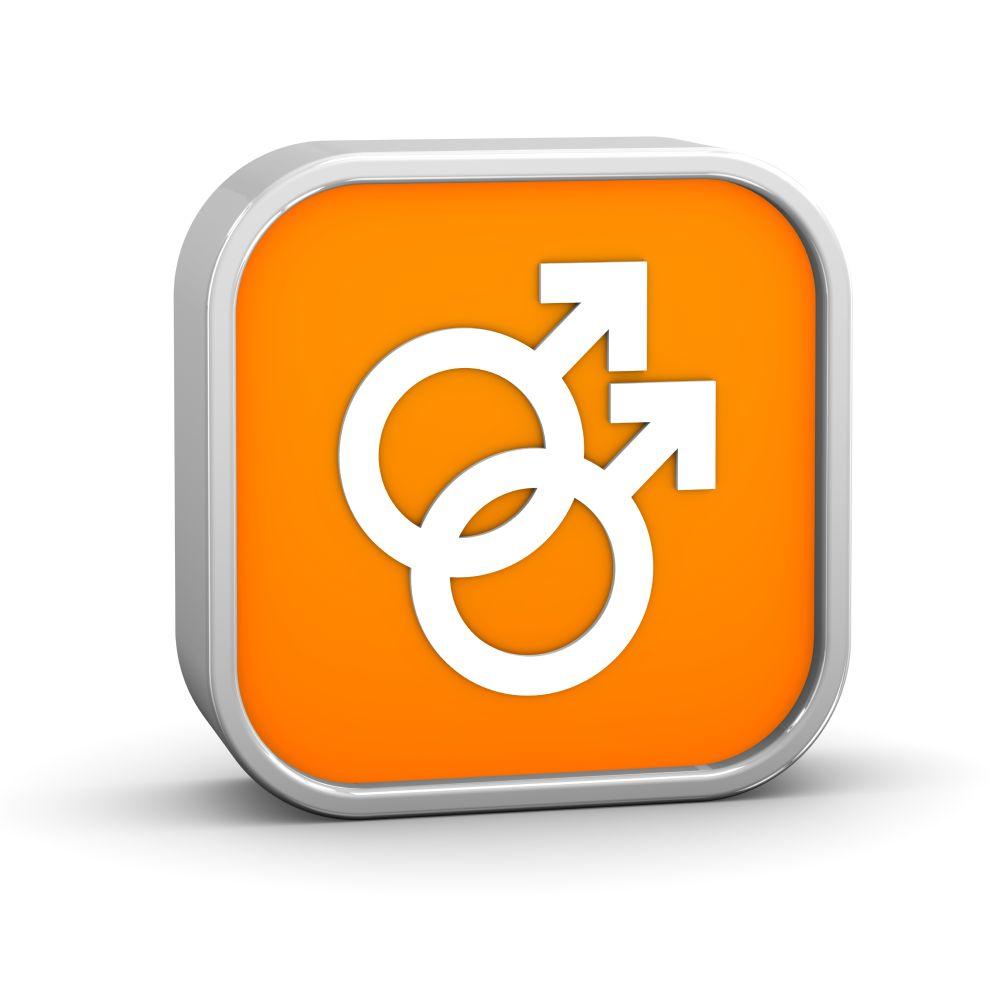 Studiedeputaatschap homoseksualiteit aan de slag